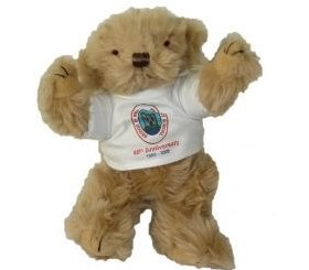 fully-jointed-school-bear-tshirt